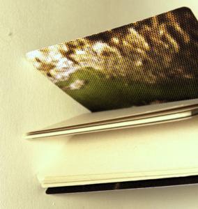 caderno-cactus