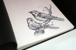 folha-de-rosto-pardal-e-andorinha-caderno-desenho-vermelho