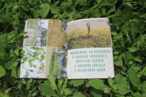 jardinagem-de-guerrilha-articulturas-do-sensivel