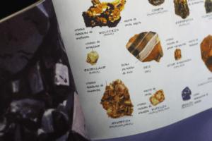 miolo-colecionador-de-pedras-seg