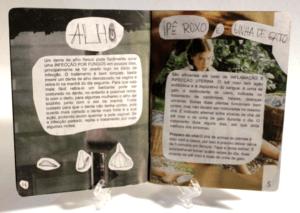 miolo-manual-doencas-femininas3