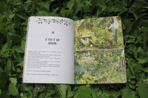 o-que-e-um-jardim-articulturas-do-sensivel-elis-rigoni