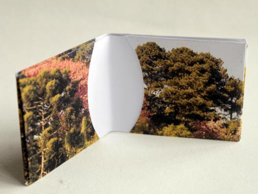 carteira papel floresta