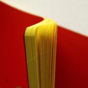 detalhe caderno miolo amarelo